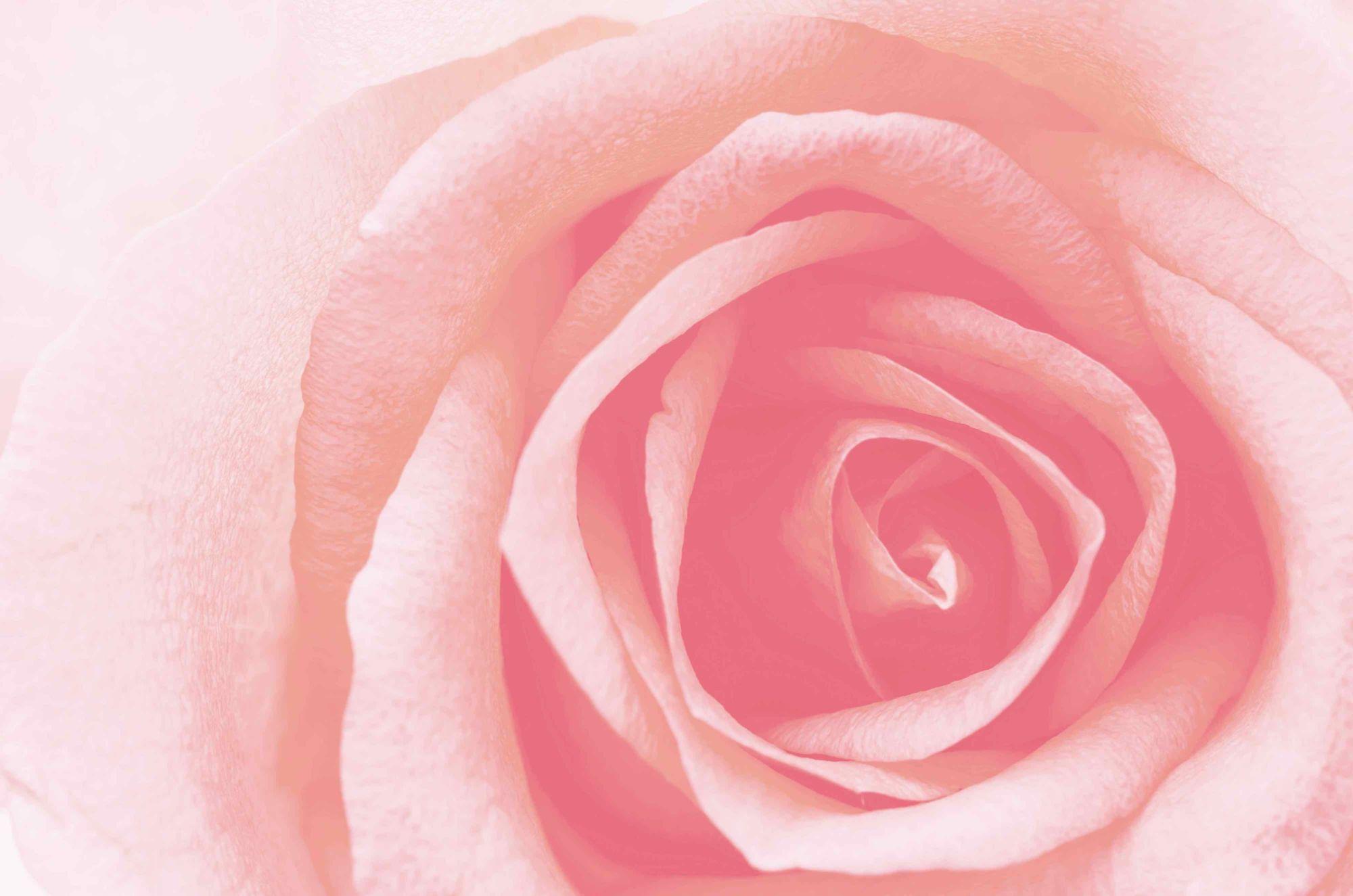 růžová altearah bio