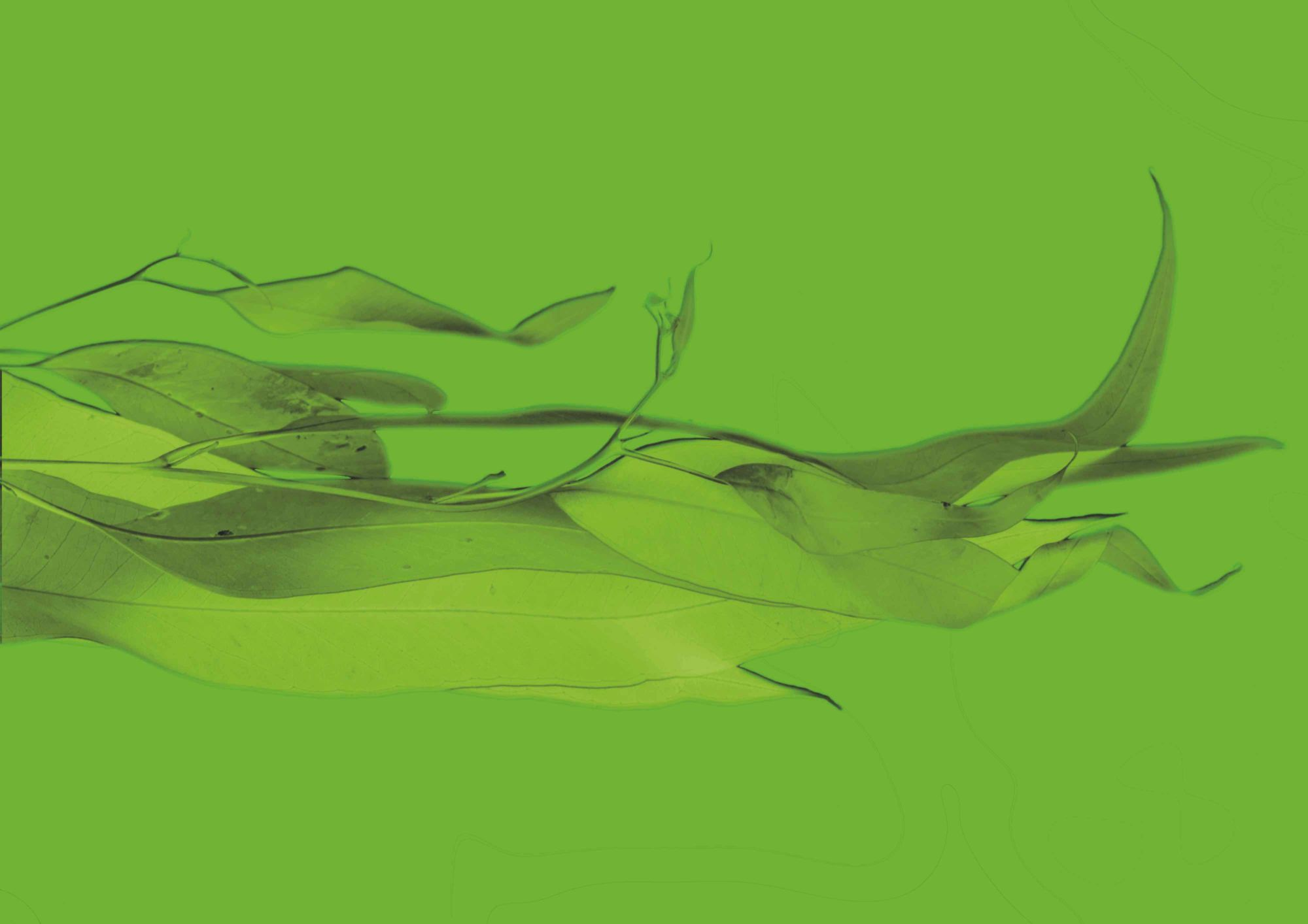 zelená altearah bio